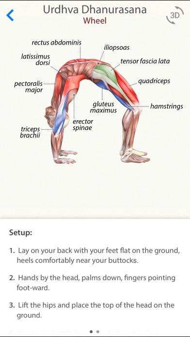 3D Yoga AnatomyScreenshot of 1