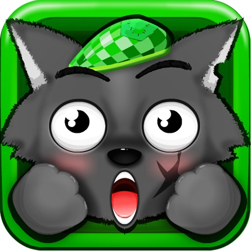 会说话的大笨狼—汤姆大战永利皇宫猫