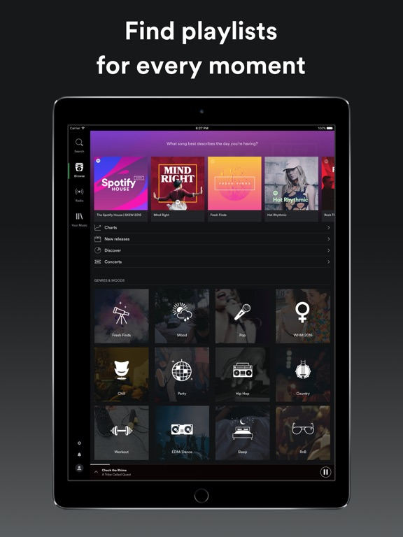 Spotify Music iPad