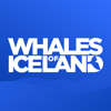 Whales of Iceland Audio Guide