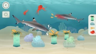 Tinybop 出品的《珊瑚礁》