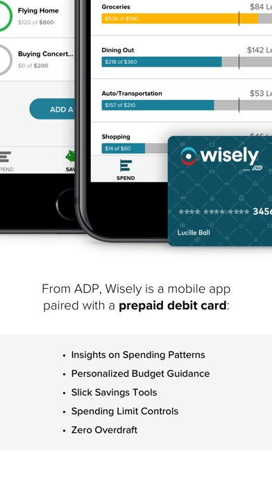 Wisely: Budget. Spend. Save. Screenshot on iOS
