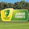 CA Junior Formats players skills 2017
