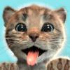 Fox and Sheep GmbH - Little Kitten Adventures  artwork
