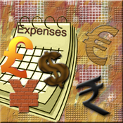 Monthly Expenses app review