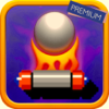 Priti Kaloni - Bricks Arkanoid : Premium! artwork