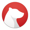 Bear 앱 아이콘 이미지