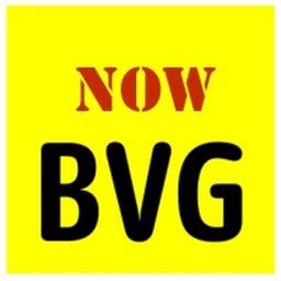 BVG Info
