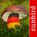 Pilzführer Deutschland, Pilze! - Mullen & Pohland GbR