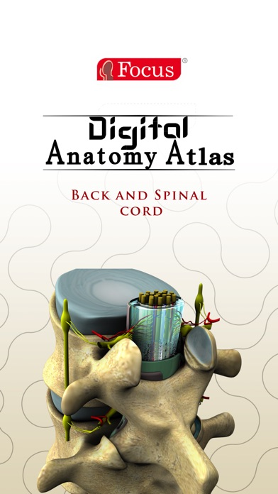 Back and Spinal cord screenshot one