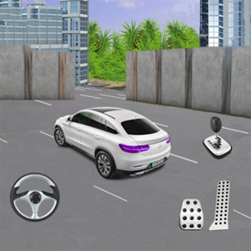 Real Cars Parking Simulator 3d