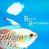 River And Reef Aquatics