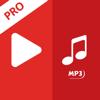 Video MP4 to MP3 Converter Pro