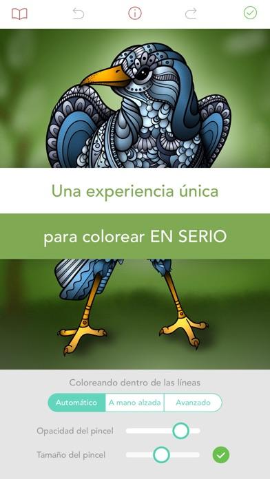 download Pigment - Libro para colorear apps 3