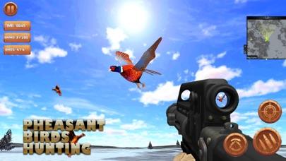 Охота за птицами Скриншоты3