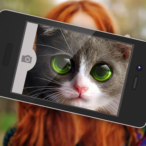 What Cat? iOS App