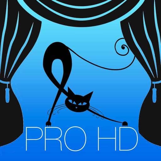 打节奏的猫 HD