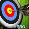 A Hunter Victory Pro : Super Archery Warrior