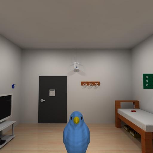 Escape Game-Balentien's Room iOS App