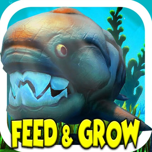 New feed grow fish battle simulator by nagy kira for Fish and grow