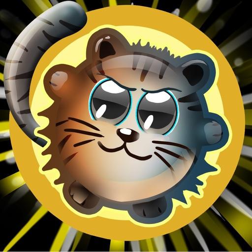 Cute Kitty Cat Junglez Escape images