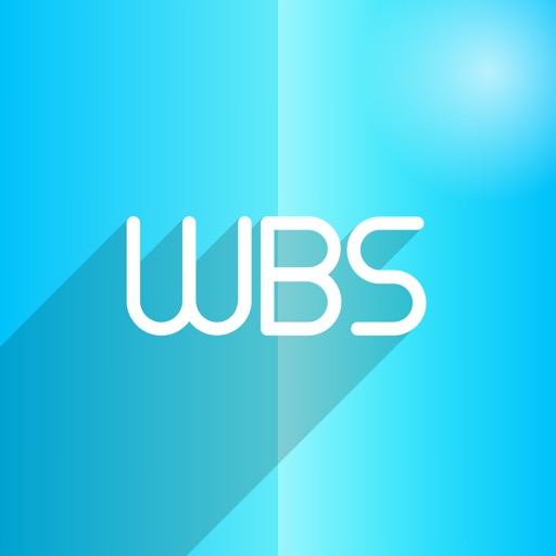 WBS – Project work breakdown structure management