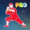 Learn Mandarin - HSK Hero Pro