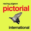 Racing Pigeon Pictorial International icon