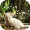Kitten Sounds – Cat Meow Sound