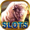 White Buffalo Casino — Slot Machine