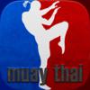 Muay Thai Kick-boxing WWE Martial Arts Lesson