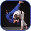 Judo in brief