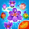 Blossom Blast Saga: Match & Link Flowers to Grow! Wiki