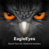 EagleEyes-plus