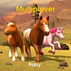 Pony Multiplayer multiplayer