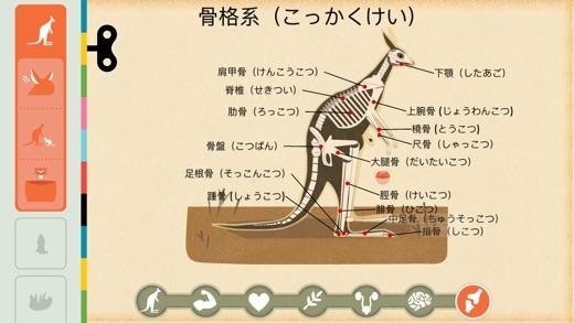 タイニーボップの哺乳類 Screenshot
