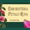 Erboristeria Petalo Rosa