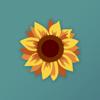 Brun og blid solpass