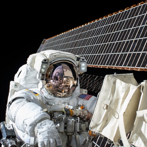 astronauts in space experience - photo #4