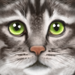 Ultimate Cat Simulator - Gluten Free Games