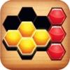 Hexadrop Puzzle