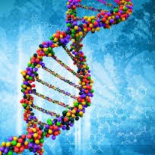 Nucleic Acid Converter