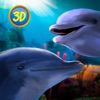Dolphin Family Simulator