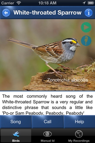 Bird Song Id USA Automatic Recognition Birds Songs screenshot 2