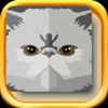Persian Cat Stickers - Persian Cat Emojis messenger sticker translator