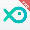 财鱼管家Pro—自动管理22类资产的家庭总账本