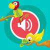 Cute Animals - Learn Animal Sounds, Noises & Names Wiki
