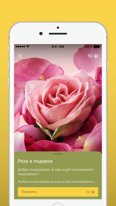 Во имя розы Скриншоты6