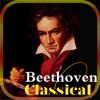 [5 CD]  ベートーベン Beethoven Classic 100%