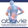 Atlas Espondiloartropatía Axial